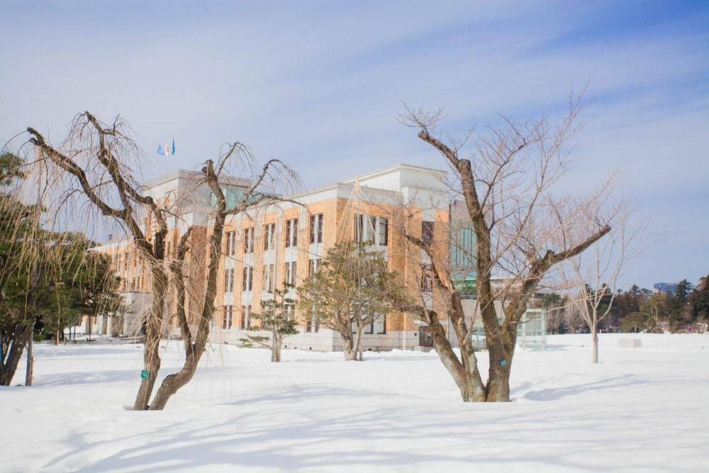 school shut down due to snow