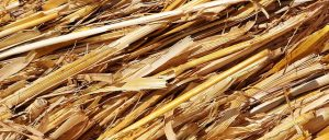 straw acts as a great rock salt alternative